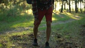 Douleur simple de genou de sentiment de campeur pendant la marche dans la forêt, le tenonitis et l'entorse clips vidéos