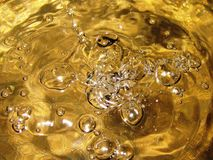 Dourado Fotografia de Stock Royalty Free