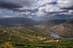 Douro Stock Photography