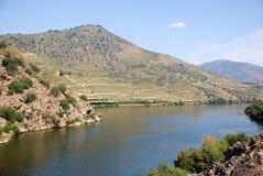 douro河 图库摄影