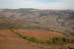 douro Стоковое Фото