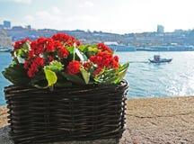 Douro Fluss Lizenzfreie Stockfotos