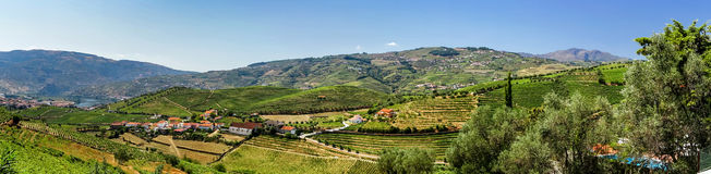 Douro hills panoramic view. Wine region in Portugal Stock Photography