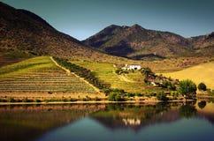 Douro Landscape IV Stock Image