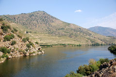Douro River Stock Photography
