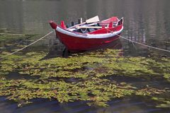 Douro River Boat Royalty Free Stock Photo