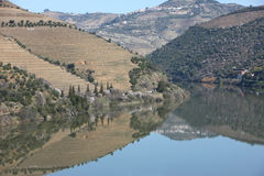 Douro river landscape Royalty Free Stock Image