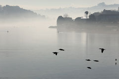 Douro river in the morning mist Royalty Free Stock Images