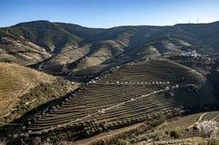 Douro River Valley Stock Photo