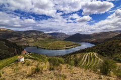 Douro River. View of the Douro Valley, Almendra, Portugal Royalty Free Stock Images