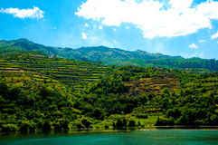 Douro River Vineyards Terraces, Mountains Landscape, Coastline royalty free stock images
