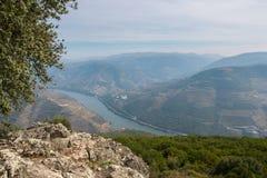 Douro Valey στοκ εικόνα με δικαίωμα ελεύθερης χρήσης