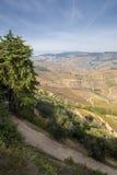 Douro Valey. Alto Douro Wine Country's Heritage Stock Photos