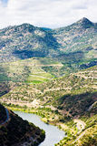 Douro Valley Royalty Free Stock Image
