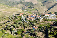Douro Valley Royalty Free Stock Images