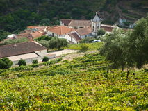 Douro Valley Covelinhas village Royalty Free Stock Image