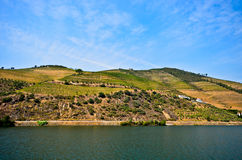 Douro Valley: Duero riverside with vineyards near Pinhao, Portugal Stock Photo