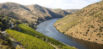 Douro Valley. Landscape in Douro Valley, Portugal stock photography