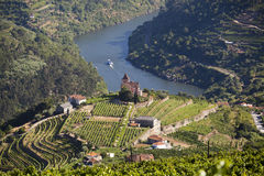 Douro Valley Stock Photos
