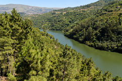 Douro valley in Portugal Stock Photo