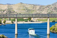 Douro Valley, Portugal Royalty Free Stock Images