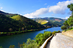 Douro Valley in Portugal. View of Douro valley, situated near Porto, Portugal royalty free stock photo