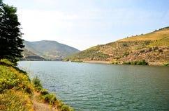 Douro Valley: Riverside and vineyards near Peso da Regua, Portugal Stock Photos