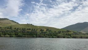 Douro valley. View of Douro valley from Douro river stock video footage