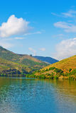 Douro Valley Stock Photography