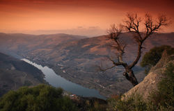 Douro´s River Stock Photography