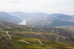 Dourovallei Stock Afbeelding