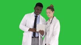 Doutor afro-americano profissional dos cuidados médicos intelectuais com o colega que usa a tabuleta digital em uma tela verde, c filme