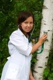 Doutor da árvore Imagem de Stock