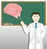Doutor da neurologia Foto de Stock
