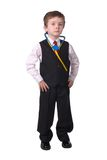 Doutor do menino Fotografia de Stock