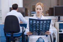 Doutor fêmea agradável que examina a imagem do raio de X foto de stock royalty free