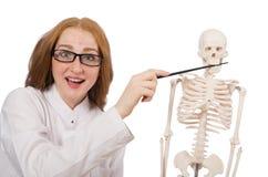 Doutor fêmea novo com o esqueleto isolado no Fotos de Stock Royalty Free