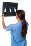 Doutor fêmea que olha o relatório do raio X do paciente Fotografia de Stock