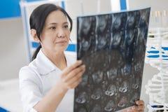 Doutor fêmea sério que trabalha com imagens do raio de X imagem de stock royalty free
