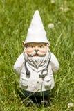 Doutor Gnome Imagens de Stock
