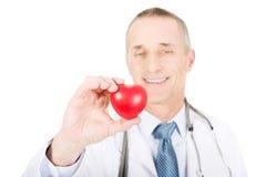 Doutor masculino maduro que guarda o modelo do coração Imagem de Stock Royalty Free