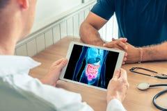 Doutor que guarda uma tabuleta digital com raio X da tecnologia 3D do intestino do paciente Prevenção da digestão e do trânsito imagem de stock royalty free