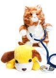 Doutor que trata o paciente Imagem de Stock Royalty Free