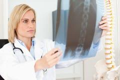 Doutor sério que olha o raio X Fotos de Stock