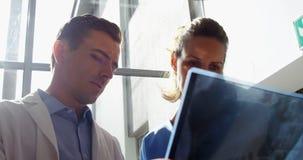 Doutores Examining Raio X Relatório vídeos de arquivo