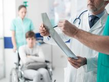 Doutores profissionais que examinam o raio X paciente do ` s imagens de stock
