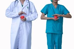 Doutores que guardam o coração decorativo no fundo branco Fotos de Stock Royalty Free