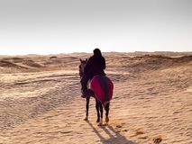 Douz, Тунис, аравийский рыцарь в пустыне на заходе солнца Стоковая Фотография