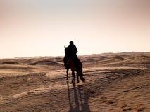 Douz, Tunísia, cavaleiro árabe no deserto no por do sol Imagens de Stock Royalty Free