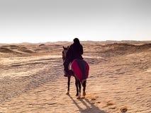 Douz, Tunísia, cavaleiro árabe no deserto no por do sol Fotografia de Stock